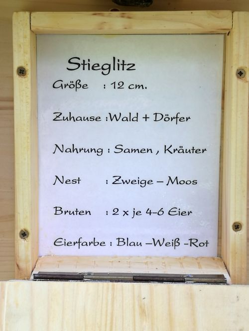 Stieglitz-Text